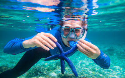 Swim, Snorkel, See: Your Vision and your Vacation