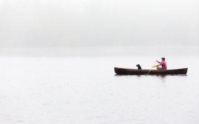 Canoes, Kayaks and Paddleboards